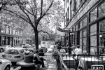 A black and white street scene with cafe patrons in Tribeca, New York City