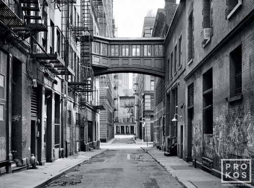 TRIBECA STAPLE ST BW PX