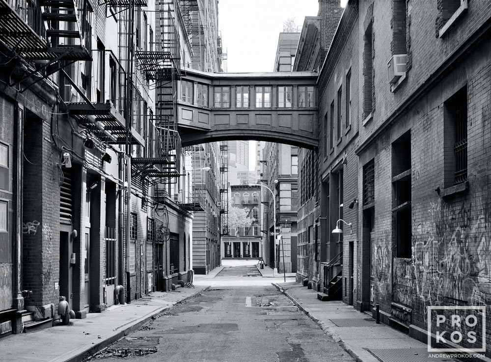 A black and white street scene photo of Staple Street in Tribeca, New York City