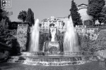 A black and white photo of the famous Organ Fountain in the gardens of the Villa D'Este, Tivoli, Italy