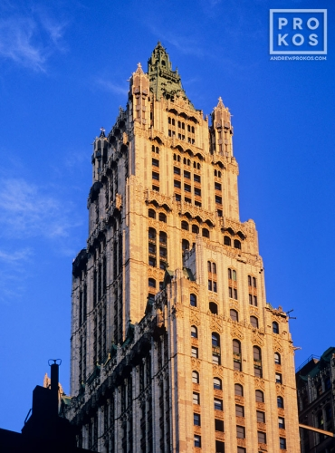 A color architectural photo of the Woolworth Building at sunset, New York City